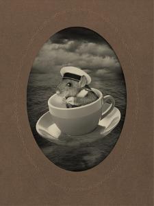 Mice Series #4 by J Hovenstine Studios