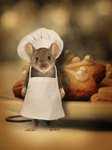 Mice Series #6.5 by J Hovenstine Studios