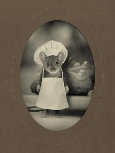 Mice Series #6 by J Hovenstine Studios