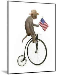 Monkeys Riding Bikes #3 by J Hovenstine Studios