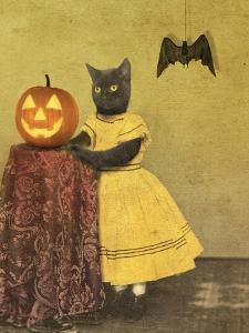 Pumpkin and Cat by J Hovenstine Studios
