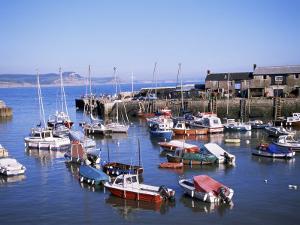 Boats in Harbour, Lyme Regis, Dorset, England, United Kingdom by J Lightfoot