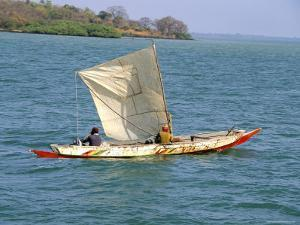 Canoe with Sail, River Gambia, the Gambia, West Africa, Africa by J Lightfoot