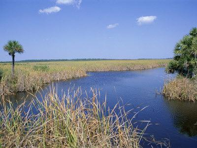 Everglades National Park, Unesco World Heritage Site, Florida, USA