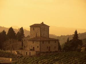 Farms and Vines, Tuscany, Italy by J Lightfoot