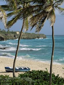 Sam Lords Castle, Palms and Beach, Barbados, West Indies, Caribbean, Central America by J Lightfoot