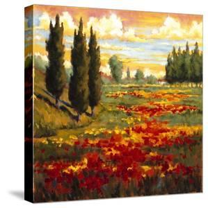 Tuscany in Bloom I by J.m. Steele