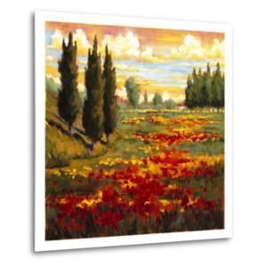 Tuscany in Bloom I by J^m^ Steele