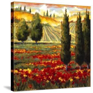 Tuscany in Bloom III by J^m^ Steele