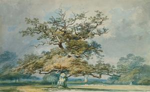 A Landscape with an Old Oak Tree by J^ M^ W^ Turner