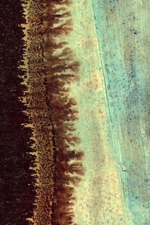j-mckenzie-lichen-i