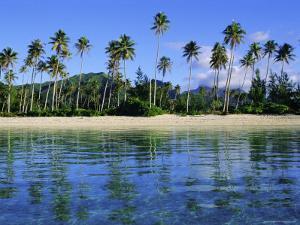 East Coast, Motu Nao Nao, Raiatea Island, Society Islands Archipelago, French Polynesia by J P De Manne