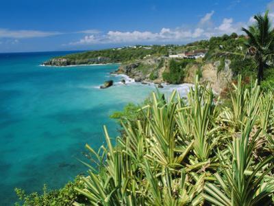 Guadeloupe, French Antilles, West Indies, Caribbean by J P De Manne