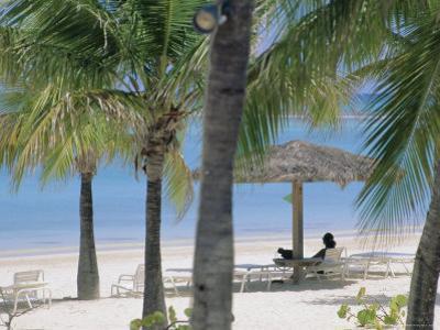 Long Island, North-East Coast, Antigua, Caribbean by J P De Manne