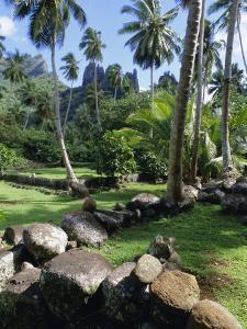 Maori Site of Tohua Hikokua, Marquesas Islands Archipelago, French Polynesia by J P De Manne