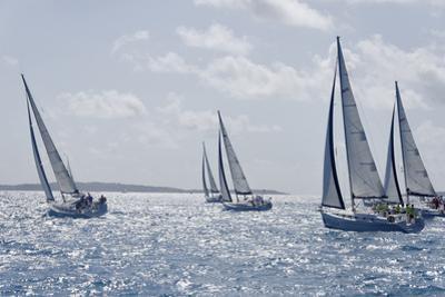 Sailboat Regattas. British Virgin Islands, West Indies, Caribbean, Central America by J P De Manne