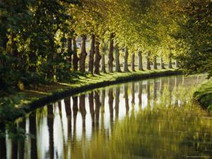The Bank of the Hure, Canal Lateral a La Garonne, Gironde, Aquitaine, France, Europe by J P De Manne
