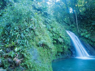 Waterfall, Guadeloupe, French Antilles, Caribbean