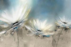 Beachside Daisies by J.P. Prior