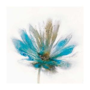 Teal Breeze I by J^P^ Prior