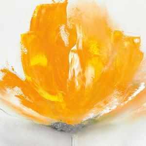 Wild Orange Sherbet I by J.P. Prior