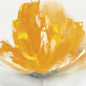 Wild Orange Sherbet II by J^P^ Prior