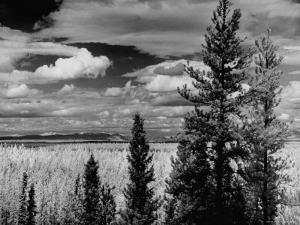 Beautiful Scene of the Countryside as Seen from the Alcan Highway by J. R. Eyerman