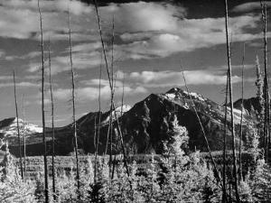 Mountains of Yukon Territory Seen from Alcan Highway by J. R. Eyerman