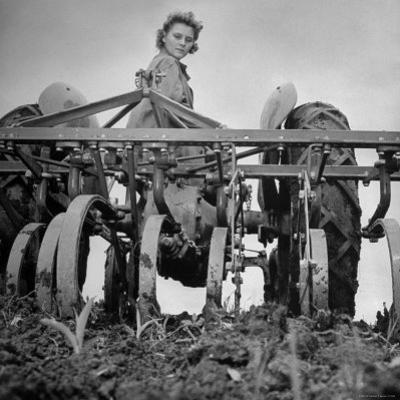 Patricia Colleen Altree Harrowing a Corn Field