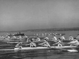 Washington Univ. Rowing Team Practicing on Lake Washington by J. R. Eyerman