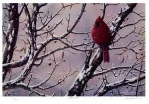 Winter Arrival by J. Vanderbrink