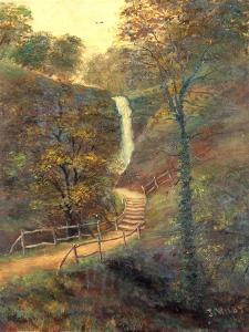 Shanklin Chine, Isle of Wight , 1911 by J. Wilby