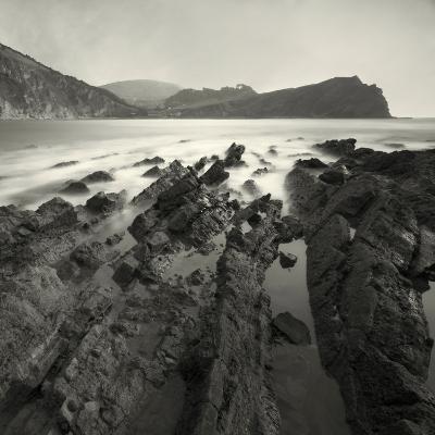 Jabberfire-David Baker-Photographic Print