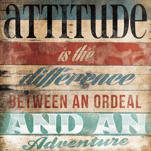 Attitude by Jace Grey
