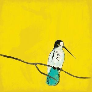 Bird On Branch 3 by Jace Grey