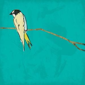 Bird On Branch 4 by Jace Grey