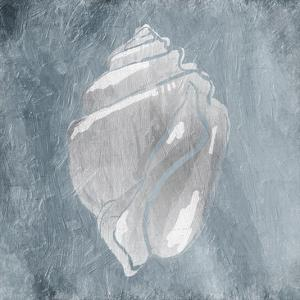 Calm Shells Three by Jace Grey