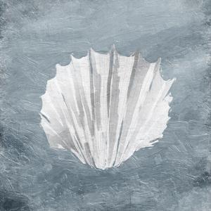 Calm Shells by Jace Grey