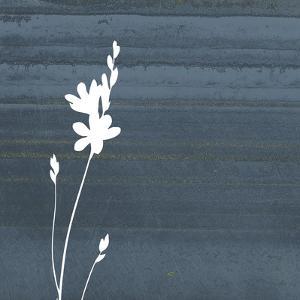 Granite Flower by Jace Grey