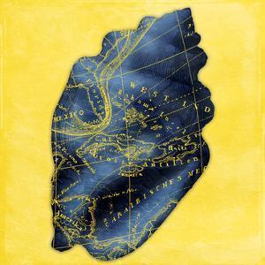 Map Shell Y Indigo by Jace Grey