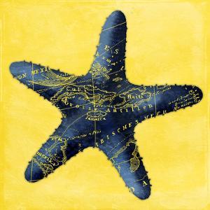 Map Starfish Y Indigo by Jace Grey