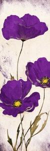 Purple Look by Jace Grey