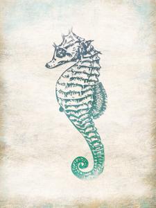Seahorse by Jace Grey