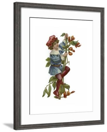 Jack and the Beanstalk--Framed Giclee Print