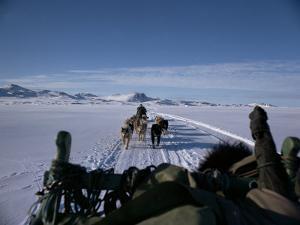 Dog Transport, Greenland, Polar Regions by Jack Jackson
