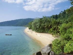 View Along the Coast, Nazri's Beach and Rainforest, Air Batang Bay, Pahang, Malaysia by Jack Jackson