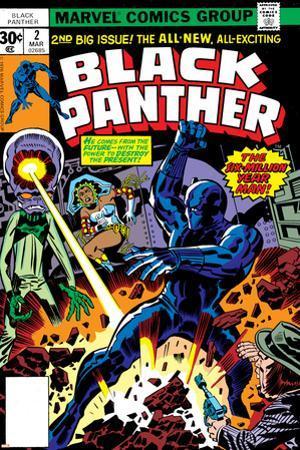 Black Panther No.2 Cover: Black Panther, Princess Zanda and Hatch-22 Charging