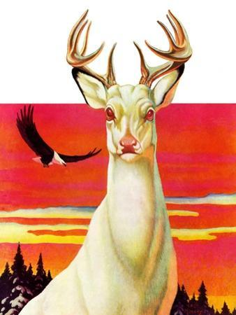 """Albino Deer,""January 8, 1938 by Jack Murray"