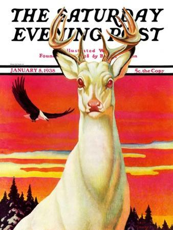 """""""Albino Deer,"""" Saturday Evening Post Cover, January 8, 1938 by Jack Murray"""