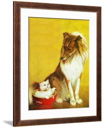 Collie and Kitten - Child Life by Jack Murray